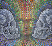 Ayahuasca dmt Jewel Being Alex Grey
